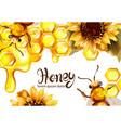 honeycomb banner watercolor vector image