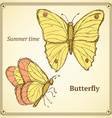 Sketch butterfly set in vintage style vector image