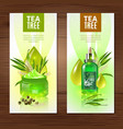 tea tree vertical banners vector image vector image