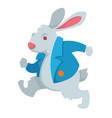 white rabbit alice in wonderland fairy character vector image