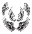 wings bird feather black white tattoo set 11 vector image vector image