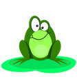 Funny Of A Happy Green Frog vector image