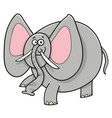 african elephant animal cartoon character vector image vector image