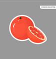 cartoon fresh grapefruit isolated sticker vector image vector image