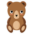 small bear on white background vector image vector image