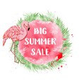 tropical background for summer sale with flamingo vector image vector image