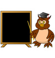 Wise owl teacher with blackboard vector image vector image
