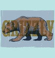 hand drawing style vintage grizzly bear poster vector image vector image