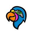 parrot head mascot vector image