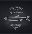anchovy hand drawn icon vector image vector image