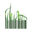 Barcode with green grass vector image vector image