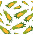 beautiful pattern of sweet corn isolated icon vector image vector image