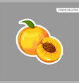 cartoon fresh peach isolated sticker vector image vector image