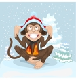 Monkey is sitting on snow and puts cap of Santa vector image vector image