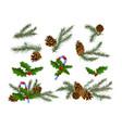 set christmas festive decor with fir-tree vector image