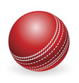 shiny red traditional cricket ball vector image