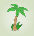 sketch of the palm tree vector image vector image