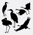 Stork heron egret and crane silhouette vector image vector image