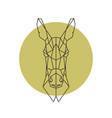 geometric head of donkey vector image