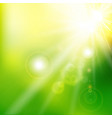 spring summer sunlight flare abstract green color vector image