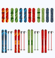 set of male and female skis and snowboards vector image