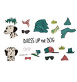 dalmatian dog couple portraits with accessories vector image vector image