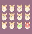 dog emoticon puppy collection vector image