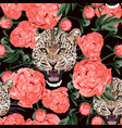graceful leopard and coral peony flowers vector image vector image