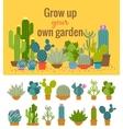 Home cactus garden poster vector image vector image