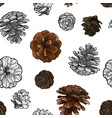 pine cones seamless pattern isolated on white vector image vector image