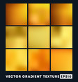 set gold gradient texture pattern background vector image