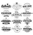 Twelve Vintage Insignias Or Labels vector image vector image