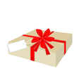 a beautiful gift box with red ribbon and tag vector image vector image