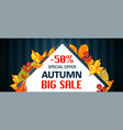 autumn special offer sale banner horizontal vector image vector image