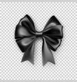 glossy black bows with ribbons vector image vector image