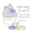 Hand drawn blueberry cupcake vector image