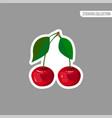 cartoon fresh cherry isolated sticker vector image