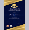 luxury certificate template with elegant blue and vector image vector image