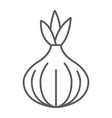 onion thin line icon vegetable and diet vector image vector image