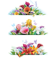 Set banners with flowers vector image vector image