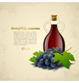 Wine bottle with a racemation of grapes vector image vector image