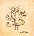 Vintage old background with calla lilies Hand vector image