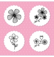Flowers floral card