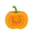 half of fresh ripe whole pumpkin vector image vector image
