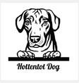hottentot dog - peeking dogs - breed face head vector image vector image