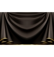 Luxury black background vector image vector image