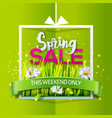 spring sale banner with green ribbon vector image vector image