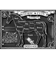 Vintage Blackboard of English Cut of Horse vector image vector image
