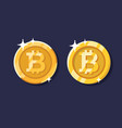 gold bitcoin coin set vector image