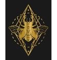 Golden beetle deer and geometric elements vector image vector image